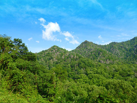 The Chimney Tops - quartzite and slate pinnacles the Cherokee called Duniskwalguni (forked antlers)