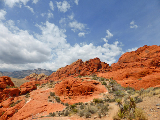 The Calico Hills